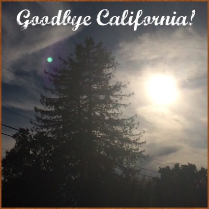 Goodbye until next time!